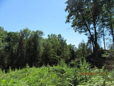 Wausaukee Residential Lots & Land For Sale: Lt0 Nejedlo Rd