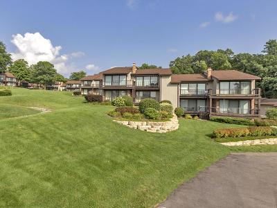 Condo/Townhouse For Sale: 1070 S Lake Shore Dr #13 B-1