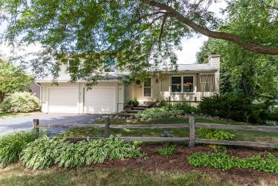 Single Family Home For Sale: 617 Rose St