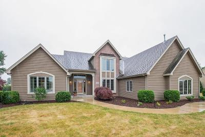 Racine County Single Family Home For Sale: 6409 Hidden Creek Rd