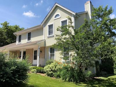 Franklin Single Family Home Active Contingent With Offer: 8089 S 85th St