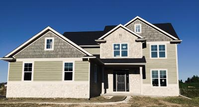 Menomonee Falls Single Family Home For Sale: Lt14 Tamarind Way