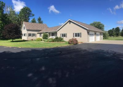 Menominee Single Family Home For Sale: N2289 Hwy M-35