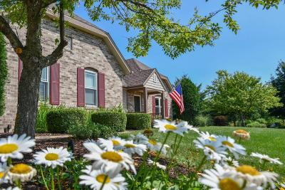 Delafield Single Family Home Active Contingent With Offer: 325 Steeple Pointe Cir
