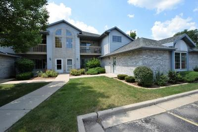 Franklin Condo/Townhouse Active Contingent With Offer: 9436 W Loomis Rd #4