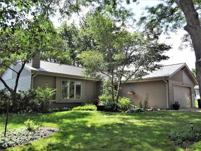 Greenfield Single Family Home Active Contingent With Offer: 4121 W Granada
