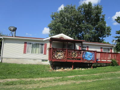 Menominee County Single Family Home For Sale: W5481 5th St