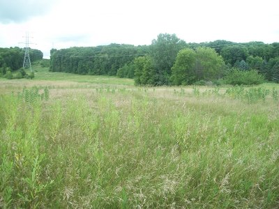 Big Bend Residential Lots & Land Active Contingent With Offer: Lt1 Edgewood Ave