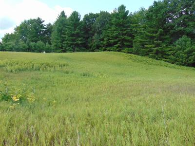 Menominee County, Marinette County Residential Lots & Land For Sale: Lt2 Serenity Ln