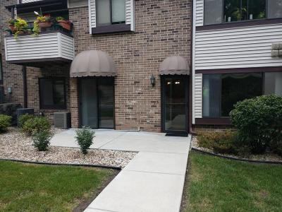 Racine County Condo/Townhouse For Sale: 3208 Wood Rd #3