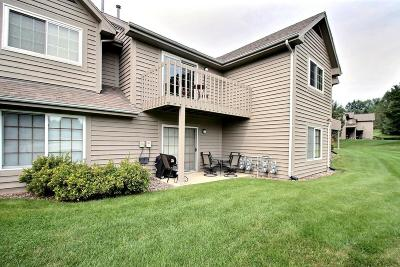 Brookfield Condo/Townhouse Active Contingent With Offer: 18675 Brookfield Lake Dr #48