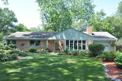 Brookfield Single Family Home For Sale: 115 N Elmridge Ave