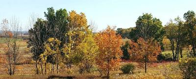 West Bend, Town Of West, Town Of Trenton Residential Lots & Land For Sale: Lt1 Pleasant Valley Rd
