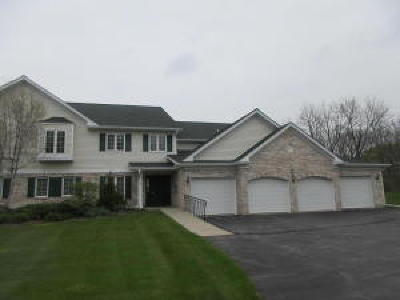 Williams Bay Condo/Townhouse For Sale: 91 Potawatomi Rd #P4