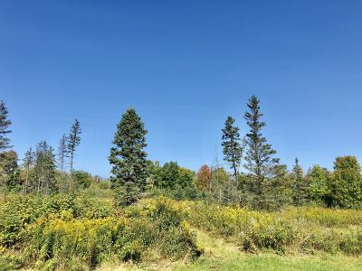 Menominee County, Marinette County Residential Lots & Land For Sale: Lt 4 Bigwoods Ln