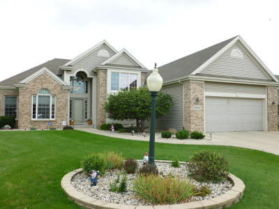 Racine County Single Family Home For Sale: 8842 Red Hawk Circle