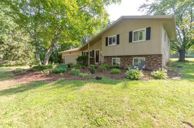 Watertown Single Family Home Active Contingent With Offer: N1710 Welsh Rd