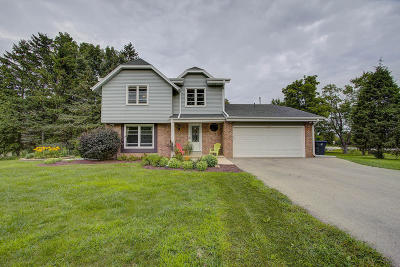 New Berlin Single Family Home For Sale: 2630 S Meadowmere Pkwy
