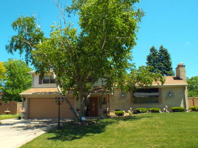 Kenosha Single Family Home For Sale: 6121 Pershing Blvd