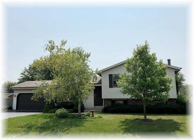 Racine County Single Family Home For Sale: 5621 Riviera Dr