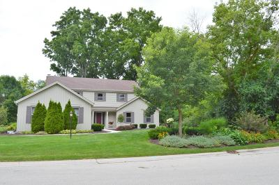Racine County Single Family Home For Sale: 4240 Wilderness Dr