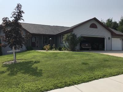 Fort Atkinson Single Family Home For Sale: 1523 Lena Ln