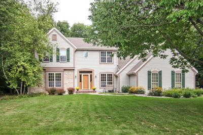 Waukesha County Single Family Home For Sale: N75w24176 N Woodsview Dr