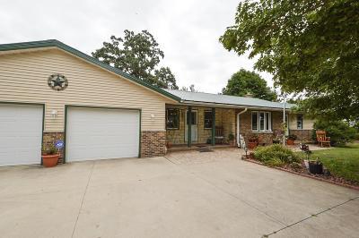Kenosha County Single Family Home For Sale: 8421 Fox River Rd