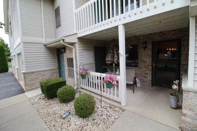 Kenosha Condo/Townhouse Active Contingent With Offer: 7107 98th Ave #A