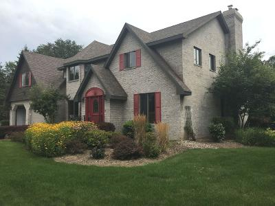 Elkhorn Single Family Home Active Contingent With Offer: N7354 Nine Indian Trl
