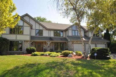 Racine County Single Family Home For Sale: 7 Ironwood Ct