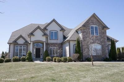 Cedarburg Single Family Home Active Contingent With Offer: N65w4855 Cedar Reserve Cir
