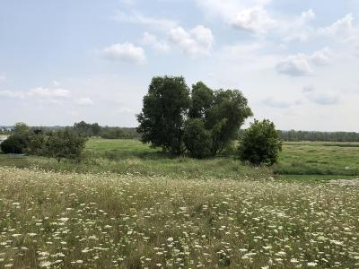 Hartford WI Residential Lots & Land For Sale: $59,900