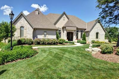 Waukesha County Condo/Townhouse For Sale: 18870 Chapel Hill Dr