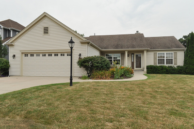 Racine County Single Family Home For Sale: 625 Mohr Circle