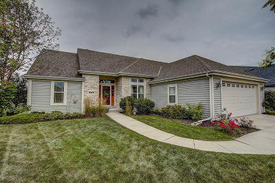 Waukesha County Single Family Home For Sale: 215 Jersey Cir