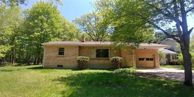 Marinette Single Family Home For Sale: 2410 Lincoln St