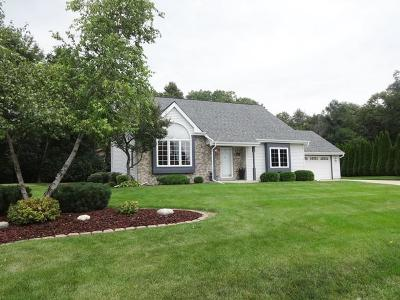 Waterford Single Family Home Active Contingent With Offer: 534 Fox River Hills Dr