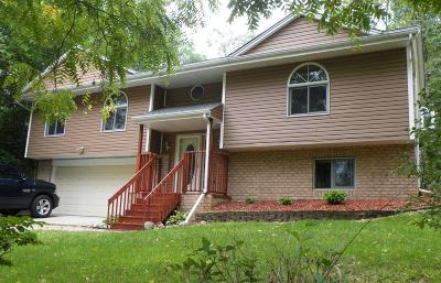 Waterford Single Family Home For Sale: 5420 Clearview Lane