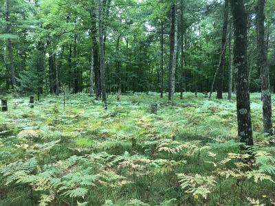 Menominee County, Marinette County Residential Lots & Land For Sale: 1.5 Acres Squaw Creek And Summer Cloud #Rds.