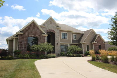 Hartland Single Family Home For Sale: 1241 Mary Hill Cir
