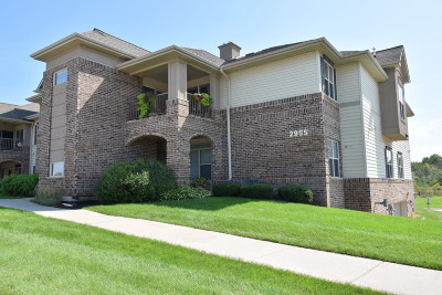 Franklin Condo/Townhouse Active Contingent With Offer: 2955 W Drexel Ave #413
