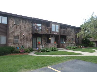 Racine Condo/Townhouse For Sale: 3800 Cheyenne Ct. Unit E
