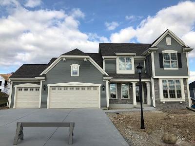 Waukesha Single Family Home For Sale: 3620 Howell Oaks Dr