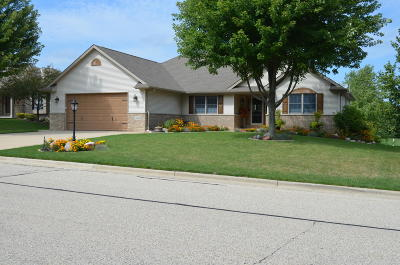 Waterford Single Family Home For Sale: 606 Mohr Cir