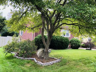 Hartland Single Family Home For Sale: 237 Willow Dr