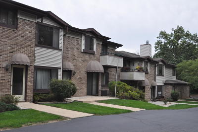 Racine Condo/Townhouse Active Contingent With Offer: 3208 Wood Rd #8