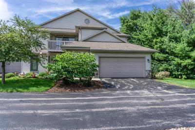 Delafield Condo/Townhouse Active Contingent With Offer: 2237 Circle Rdge #D