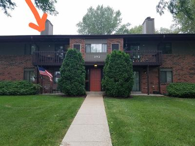 Pewaukee Condo/Townhouse Active Contingent With Offer: 392 Park Hill Dr #E