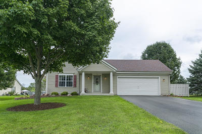 Dousman Single Family Home Active Contingent With Offer: 182 Cramer Ave